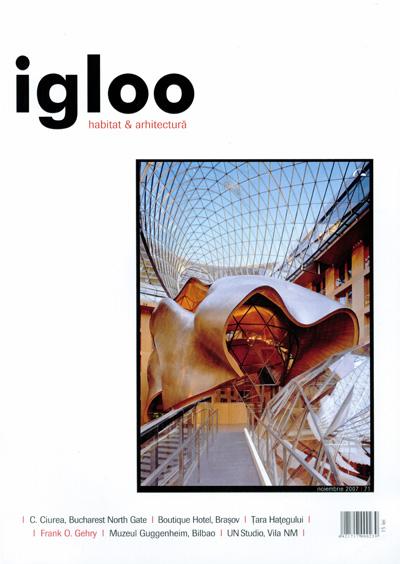 igloo_2007_11